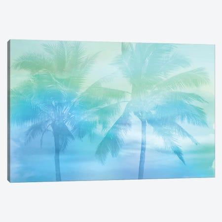 Palm Breeze Blue I Canvas Print #MIA23} by Mia Jensen Canvas Print