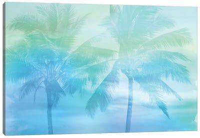 Palm Breeze Blue I Canvas Art Print