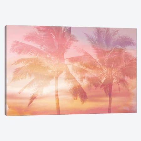 Palm Breeze I Canvas Print #MIA24} by Mia Jensen Canvas Art