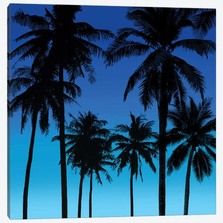 Palms Black on Blue I Canvas Print #MIA25} by Mia Jensen Canvas Art