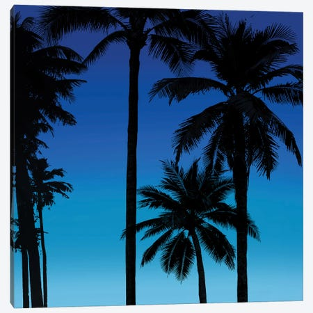 Palms Black on Blue II Canvas Print #MIA26} by Mia Jensen Canvas Wall Art