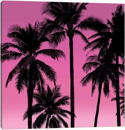 Palms Black on Pink I Canvas Art Print