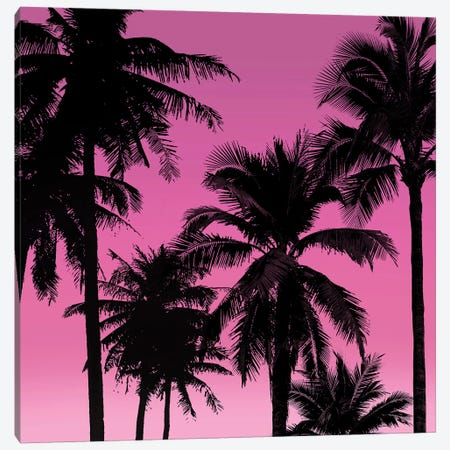Palms Black on Pink II Canvas Print #MIA28} by Mia Jensen Art Print