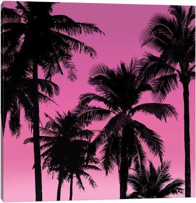 Palms Black on Pink II Canvas Art Print