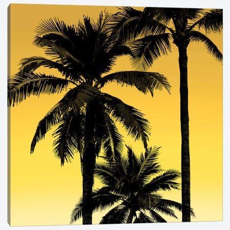 Palms Black on Yellow I Canvas Print #MIA29} by Mia Jensen Canvas Art Print