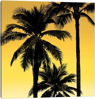 Palms Black on Yellow I Canvas Art Print