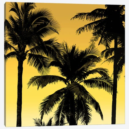 Palms Black on Yellow II Canvas Print #MIA30} by Mia Jensen Canvas Artwork