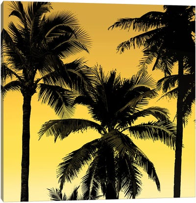 Palms Black on Yellow II Canvas Art Print