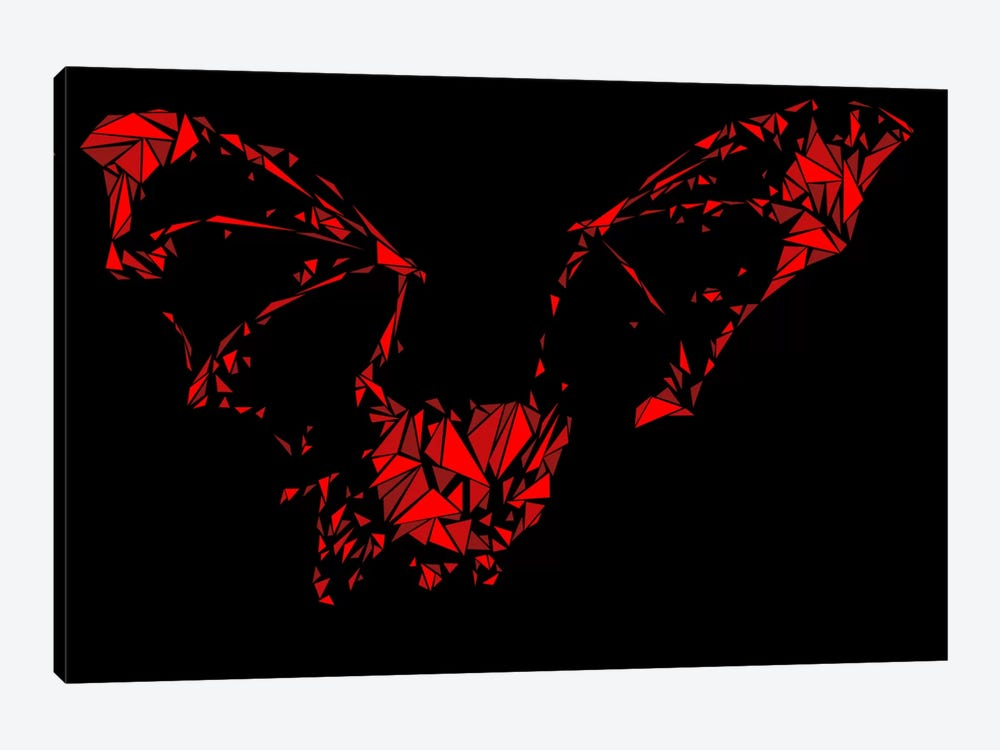 Bat by Cristian Mielu 1-piece Canvas Print