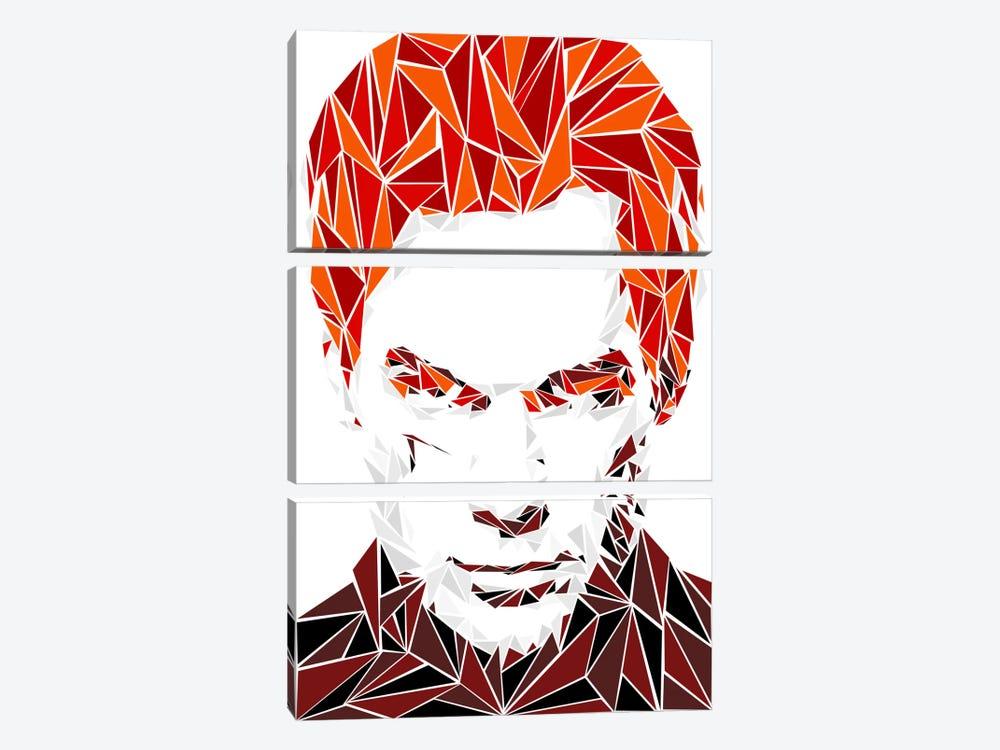 Dexter I by Cristian Mielu 3-piece Canvas Art
