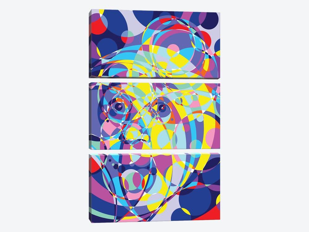 Albert United Circles by Cristian Mielu 3-piece Canvas Art Print