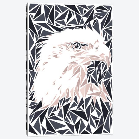 Eagle Canvas Print #MIE21} by Cristian Mielu Canvas Art Print