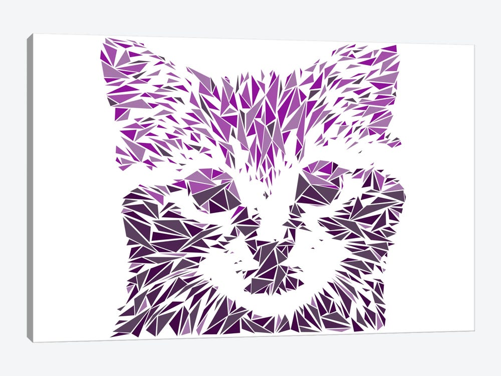 Kitten by Cristian Mielu 1-piece Canvas Wall Art