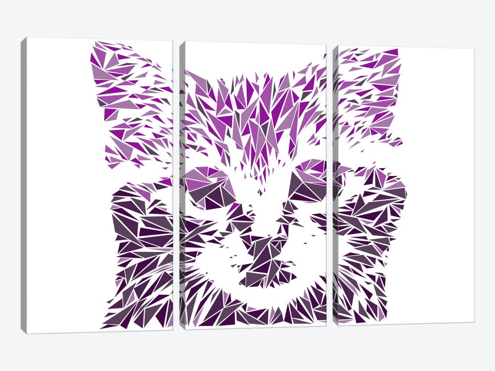 Kitten by Cristian Mielu 3-piece Canvas Art