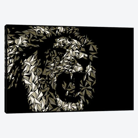 Lion Canvas Print #MIE47} by Cristian Mielu Canvas Wall Art