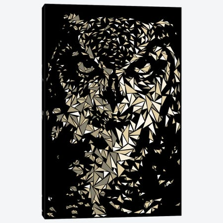 Owl Canvas Print #MIE57} by Cristian Mielu Art Print