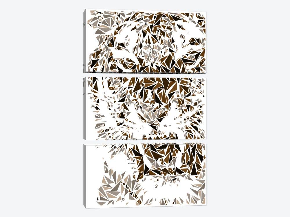 Tiger by Cristian Mielu 3-piece Art Print
