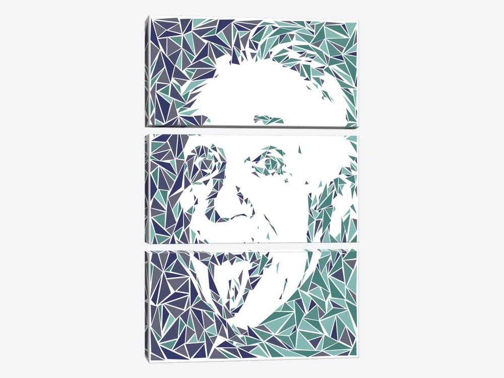 Albert Einstein by Cristian Mielu 3-piece Canvas Art Print