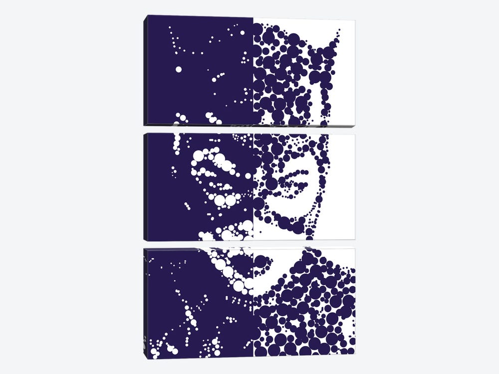 Catwoman by Cristian Mielu 3-piece Canvas Art Print