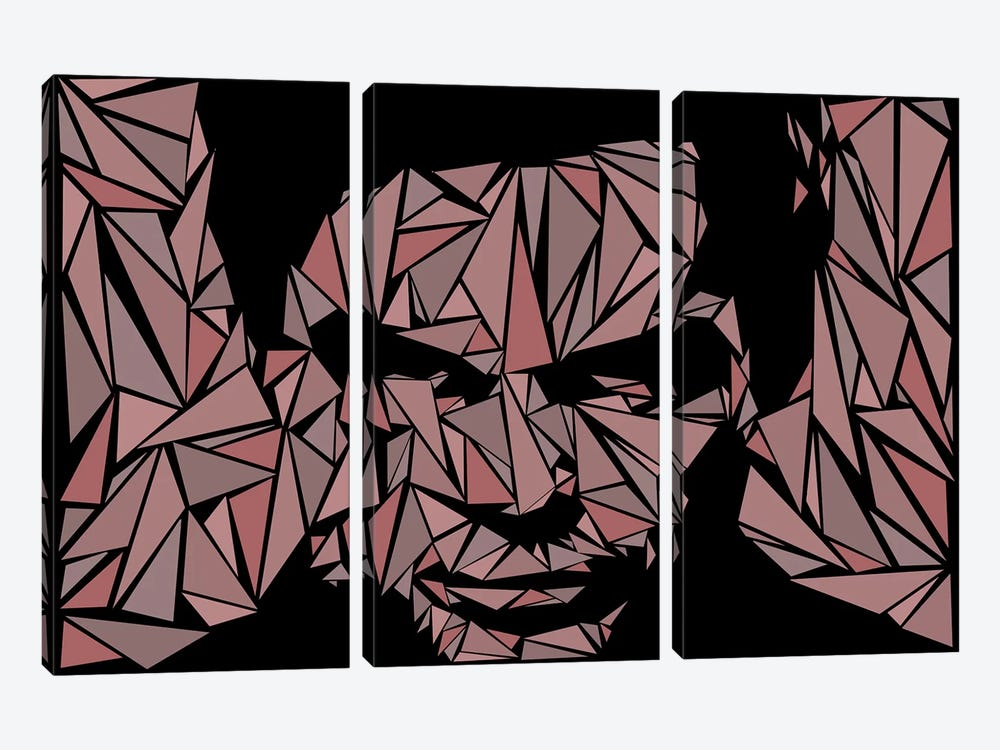 Dexter II by Cristian Mielu 3-piece Canvas Artwork