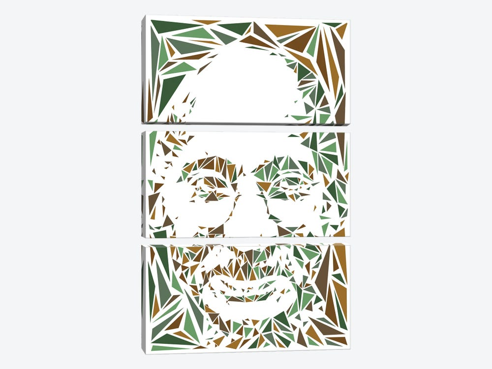 Gandhi by Cristian Mielu 3-piece Canvas Wall Art