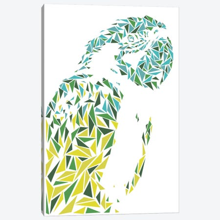 Ara Parrot Canvas Print #MIE8} by Cristian Mielu Canvas Art