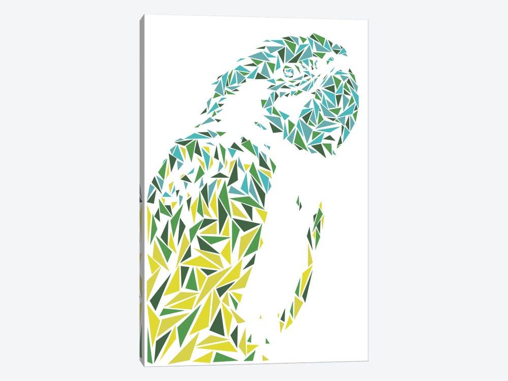 Ara Parrot by Cristian Mielu 1-piece Art Print