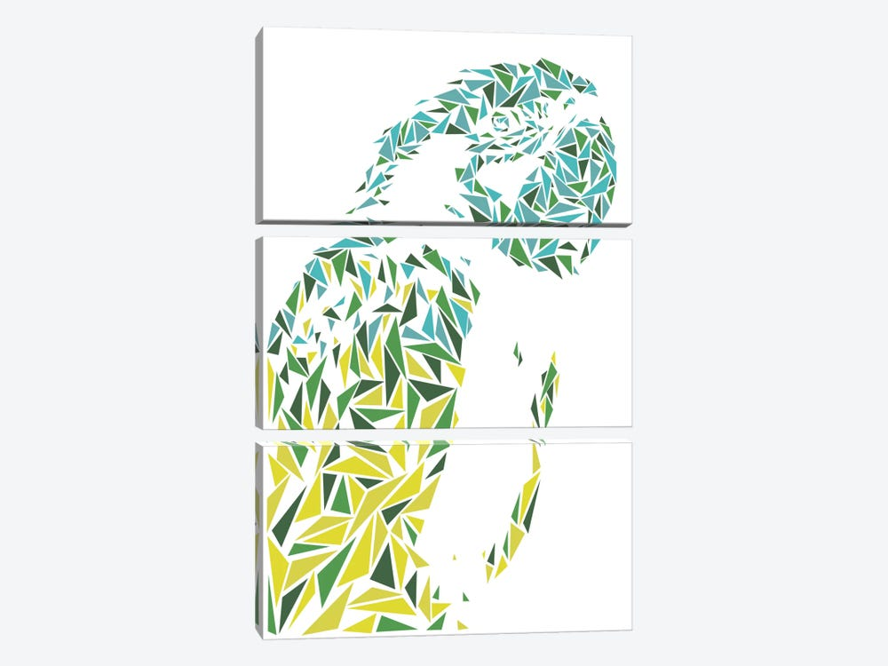 Ara Parrot by Cristian Mielu 3-piece Art Print