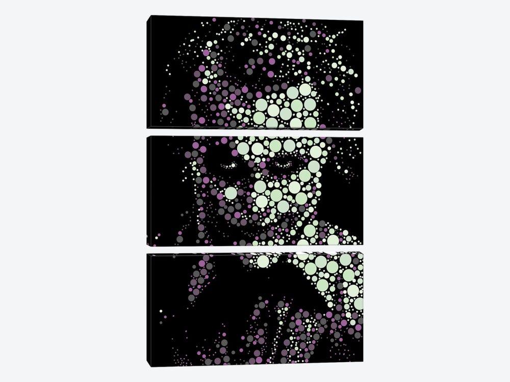 Joker V by Cristian Mielu 3-piece Canvas Wall Art