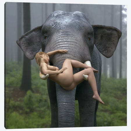 Wild Elephant Carries A Young Woman Canvas Print #MII101} by Mike Kiev Canvas Art Print