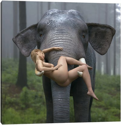 Wild Elephant Carries A Young Woman Canvas Art Print