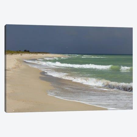 Deserted Coast Of The Black Sea III Canvas Print #MII106} by Mike Kiev Canvas Artwork