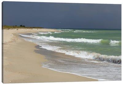 Deserted Coast Of The Black Sea III Canvas Art Print