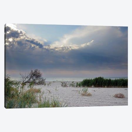 Deserted Coast Of The Black Sea I Canvas Print #MII107} by Mike Kiev Canvas Art