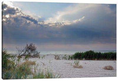 Deserted Coast Of The Black Sea I Canvas Art Print