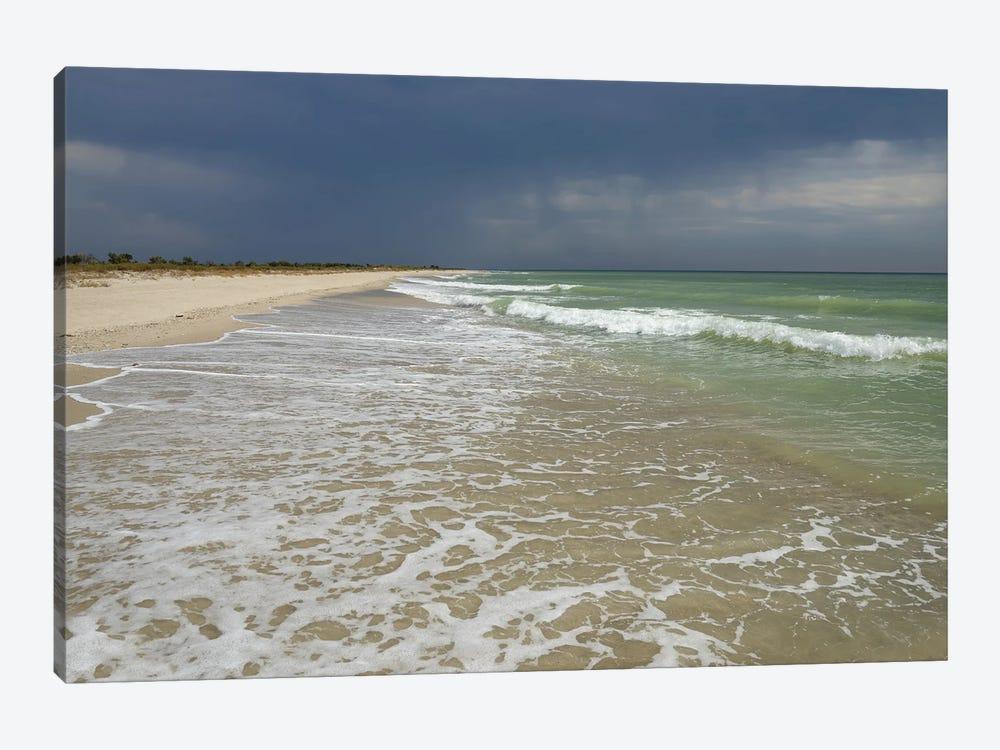 Deserted Coast Of The Black Sea VI by Mike Kiev 1-piece Art Print