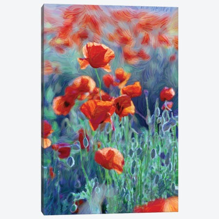 Field Of Red Poppies, Digital Painting Canvas Print #MII123} by Mike Kiev Canvas Art Print