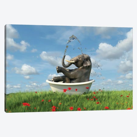Elephant Relaxing In A Bath In The Meadow Canvas Print #MII135} by Mike Kiev Art Print