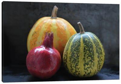 Pomegranate And Pumpkins On Black I Canvas Art Print