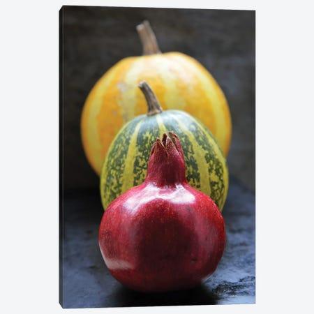 Pomegranate And Pumpkins On Black II Canvas Print #MII153} by Mike Kiev Canvas Wall Art
