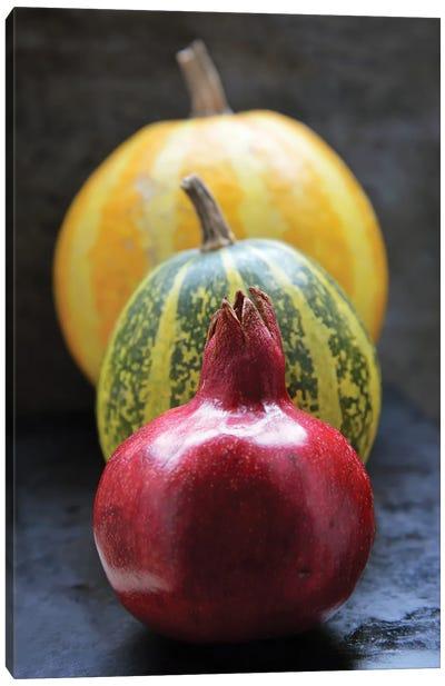 Pomegranate And Pumpkins On Black II Canvas Art Print