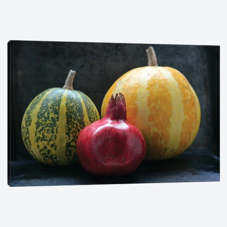 Pomegranate And Pumpkins On Black III Canvas Print #MII154} by Mike Kiev Art Print