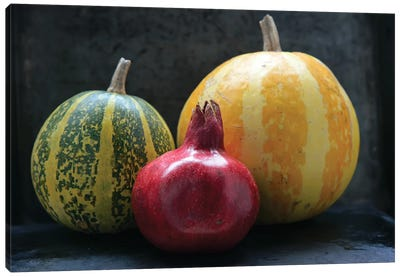 Pomegranate And Pumpkins On Black III Canvas Art Print