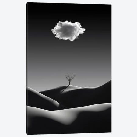 Black And White Minimalist Landscape With White Cloud Canvas Print #MII166} by Mike Kiev Canvas Artwork