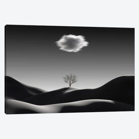 Minimalist Landscape With Blurred Cloud Canvas Print #MII168} by Mike Kiev Canvas Print