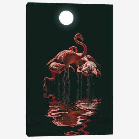 Flamingo On A Moonlit Night Canvas Print #MII176} by Mike Kiev Art Print