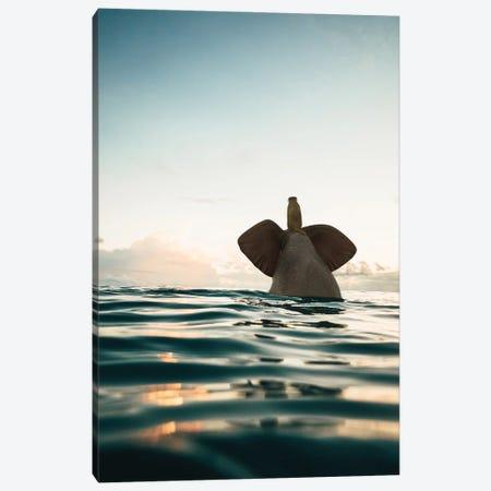Elephant And Dog Swim In The Sea Canvas Print #MII180} by Mike Kiev Art Print