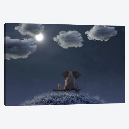 Elephant And Dog Are Sitting On A Meadow On A Moonlit Night Canvas Print #MII19} by Mike Kiev Canvas Art