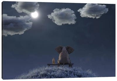 Elephant And Dog Are Sitting On A Meadow On A Moonlit Night Canvas Art Print