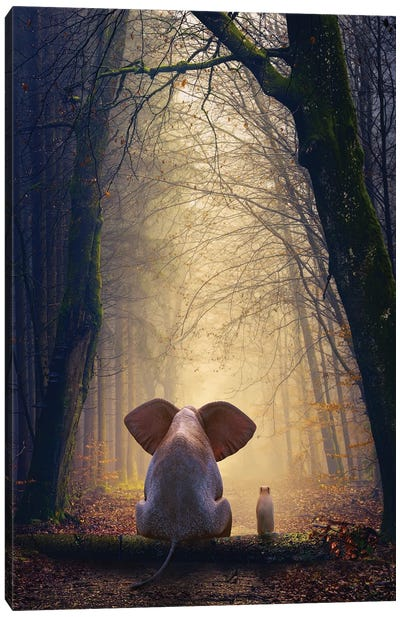 Elephant And Dog Sit In The Autumn Forest Canvas Art Print